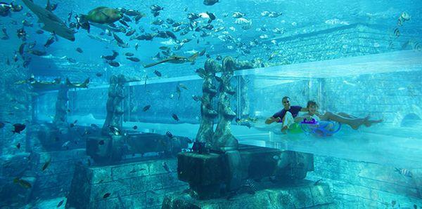 aquaventure.jpg
